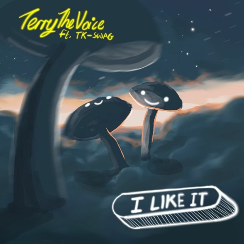 TerryTheVoice ft Tk Swag – I Like It